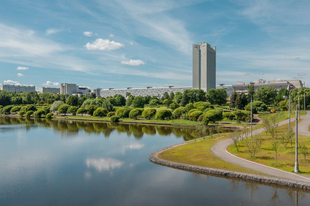 картинки города зеленоград качестве живой изгороди